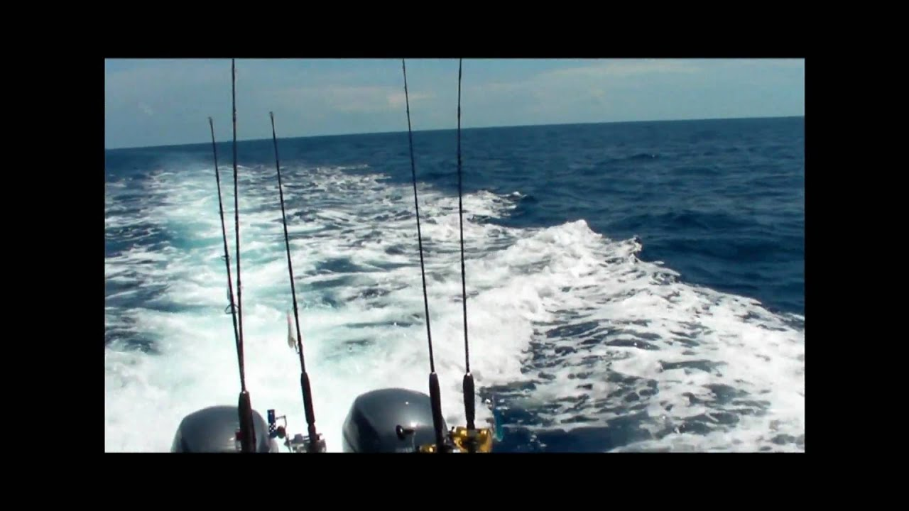 Grouper fishing offshore topsail island north carolina for North carolina surf fishing license