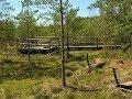 Video 2017 1 89 4276 LANDSCAPE PARKS Poland part 27 Park Krajobrazowy LASY JANOWSKIE