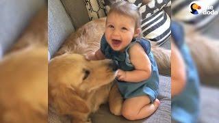 Niños creciendo con sus perros
