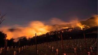 California forest fires, wine  region wildfIres, Napa Valley, Yuba Region, Santa Rosa, vineyards