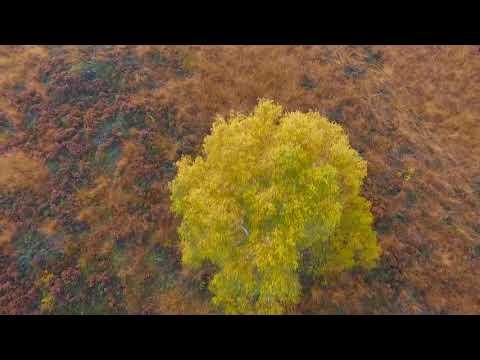 Край на лятото! От днес започва есента.