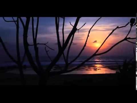 Phim Kinh Dị   MA NỮ RẮN