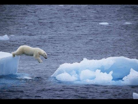 Melting Ice Caps Informative Video