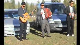 Trio Dinamico Hermanos Ortega Chagra Rico