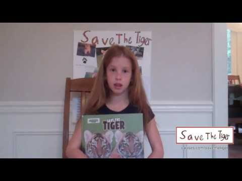 Save the Tigers - Together, We Can Do It!