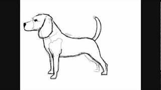 Dibujar perros perro beagle dibujos para pintar