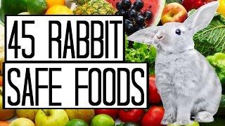 45 Rabbit Safe Foods