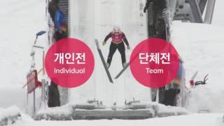 [동계스포츠 알아보기] 허공을 나는 스포츠! 스키 점프