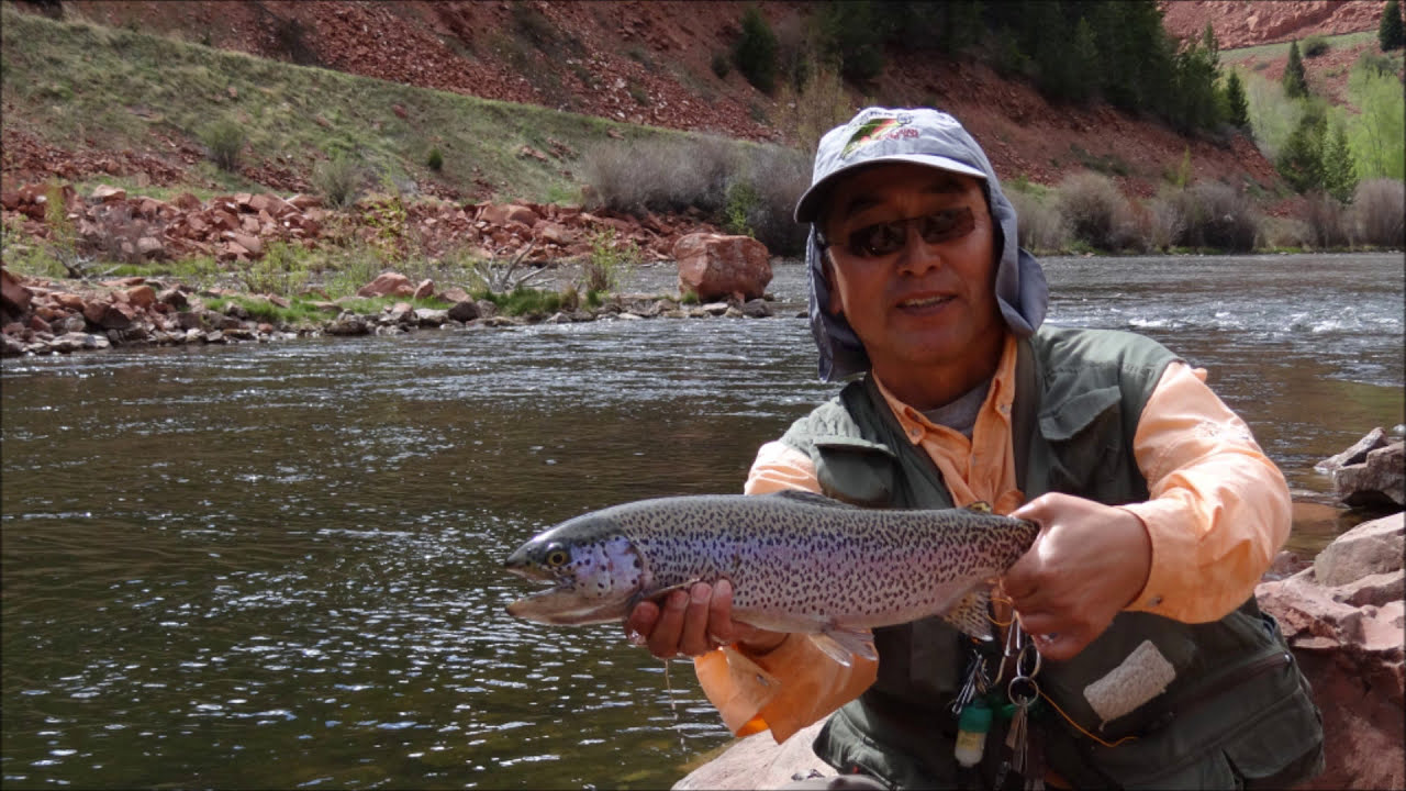 The big trout got away frying pan river colorado fly for Fly fishing in colorado