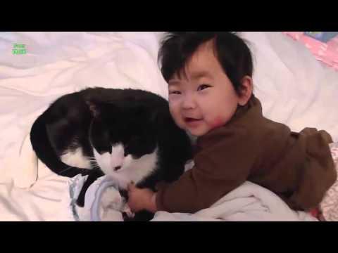 Animais engraçados e criança