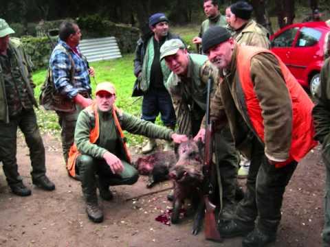 Compagnia caccia cinghiale Gheddafi  2011 2012.wmv