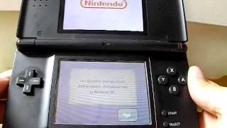 Comment Effacer La Partie Du Jeu Nintendogs Sur DS