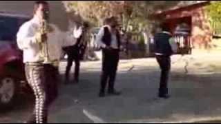 Bailando mariachi