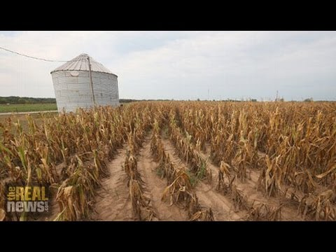UN Report Says Climate Climate Will Threaten Food Production Worldwide