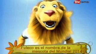 Fuleco Es El Nombre De La Mascota Del Mundial 2014