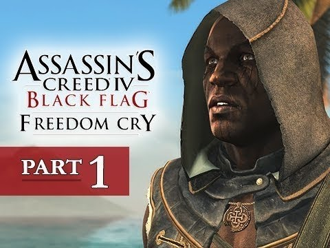 Dragos Joaca:Assassin's Creed 4 Freedom Cry-