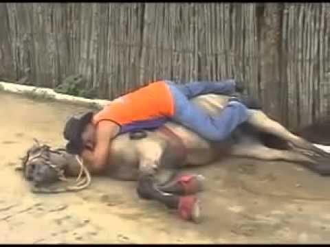 Bebado no cavalo   PARQUE DE VAQUEJADA