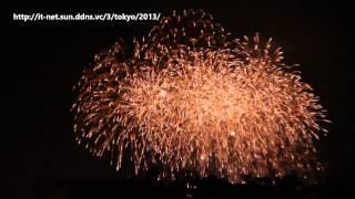 第25回 東京湾大華火祭 (2013年)