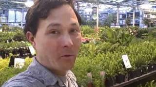 Best Source Of Garden Soil To Grow Your Vegetables.
