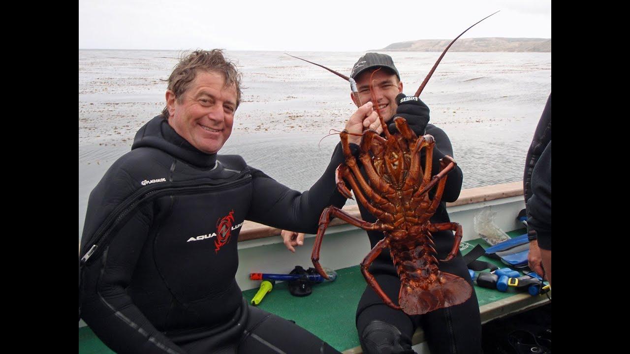 October 2013 california spiny lobster diving salt water for Lobster fishing california