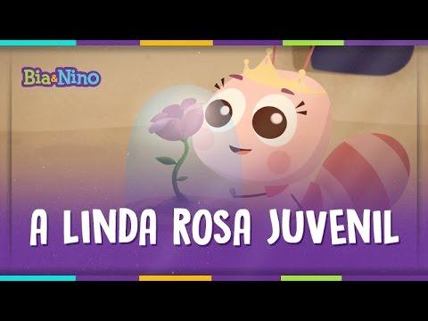 A Linda Rosa Juvenil - MPBaby [vídeo para criança]