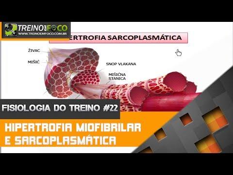 Fisiologia do Treino #22 - Hipertrofia Miofibrilar e Hipertrofia Sarcoplasmática