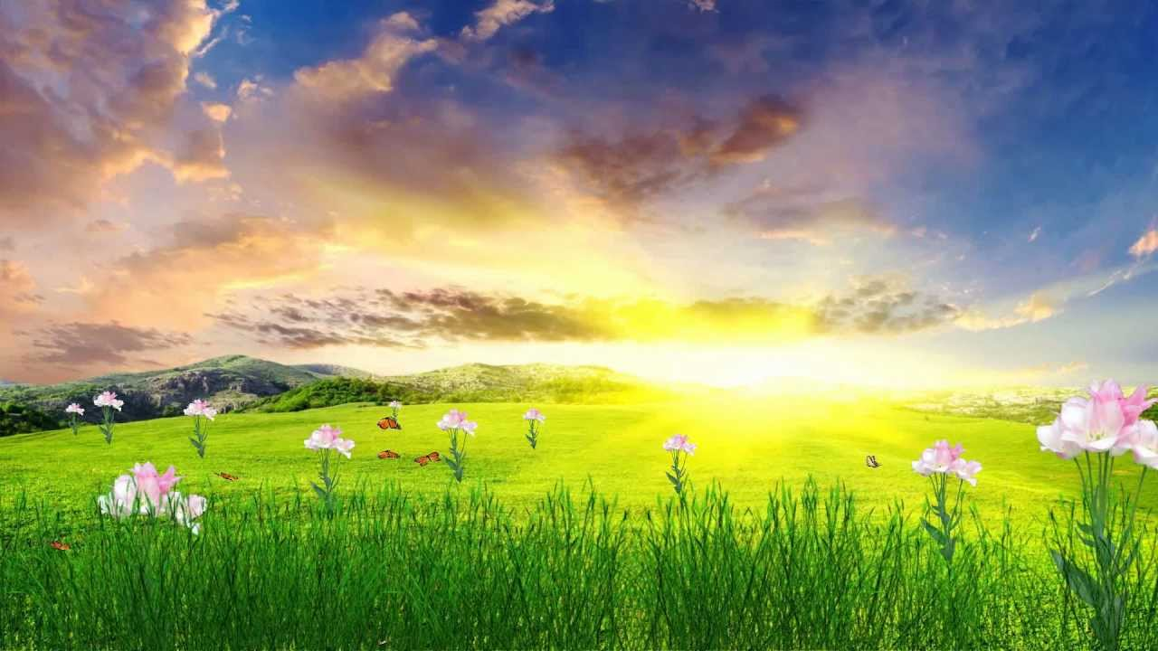 Happy spring animated wallpaper youtube - Backgrounds springtime ...