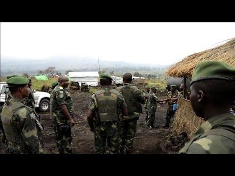 DR Congo, Rwanda, scrap over copse of trees image