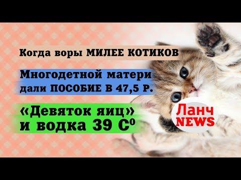 Баян. Воры залезли к бабушке и оставили ей 500 рублей на жизнь