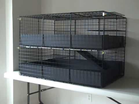 c c guinea pig cage 2x3x2 large 2 level colonial enclosed