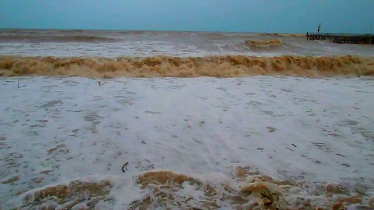 "Repeat шторм. коричневое море. золотая лихорадка: ""найти кг ."