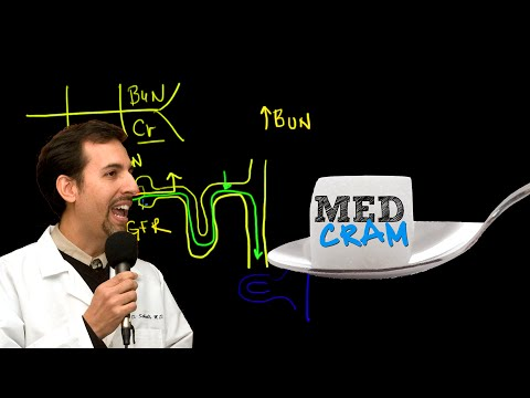 Acute Renal Failure Explained Clearly! 2 of 3