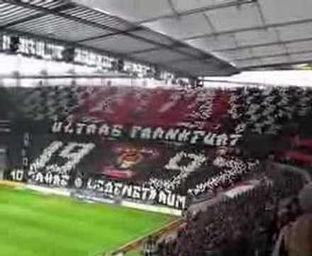schalke gegen frankfurt