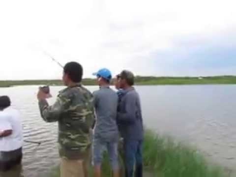 Hàng khủng trắm đen 32 kg hồ câu lò gạch(Lảnh trì,Mộc Nam,Duy Tiên,Hà Nam )