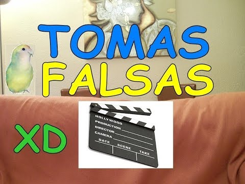 VIDEO ESPECIAL sobre AGAPORNIS - TOMAS FALSAS xD