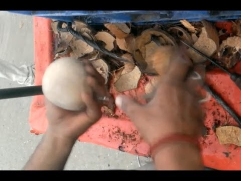 Remove Coconut Shell In 2 minutes