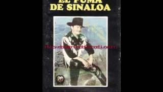El Puma De Sinaloa La Fuga Del Ceja Guera
