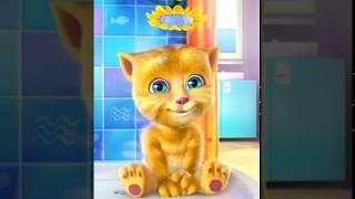 Ginger Cat Sings DREIDEL, DREIDEL, DREIDEL with Lyrics - Hanukkah Children's Song