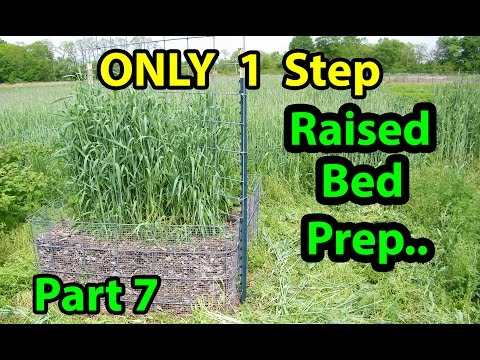 Only 1 Step Raised Bed Gardening Spring Prep.. Add nothing to the soil. Part 7