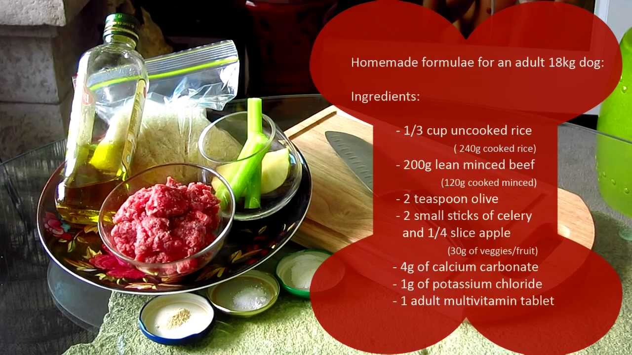 Homemade Dog Food Recipes With Rice