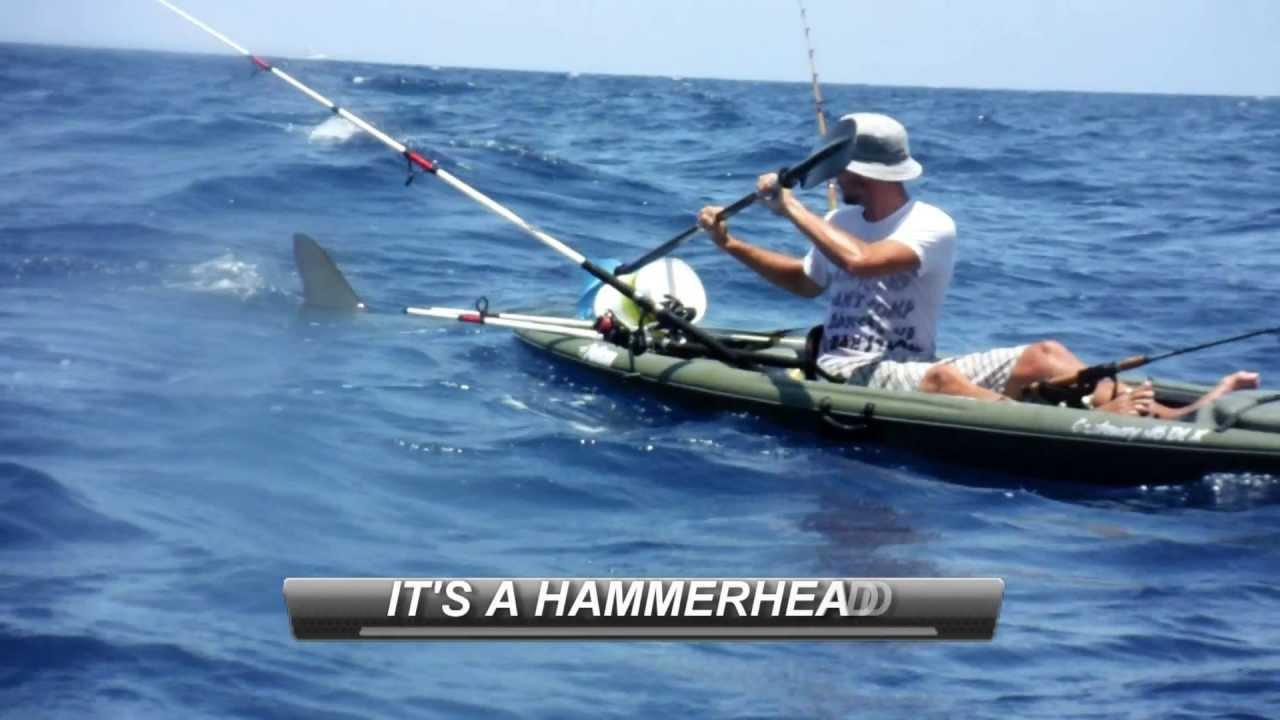Shark Attacks Kayakers