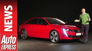 New Peugeot 508 - radical fastback aims to prove the family saloon isn't dead. Auto Express.