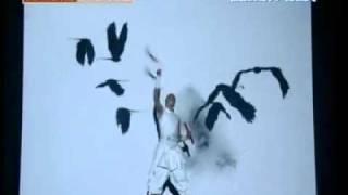 Amazing Shadow Fighting