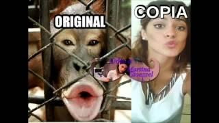 Violetta La Copiona