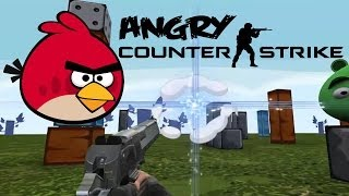 Angry Counter-Strike(angry Birds First Person Shooting