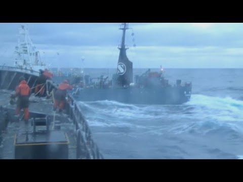 Sea Shepherd video: Activists claim 'night attack' by Japanese whalers