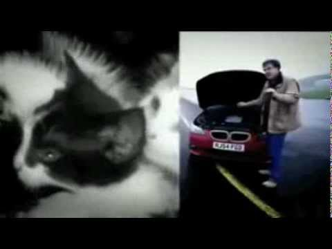 Jeremy Clarkson and The Alternative Kittens