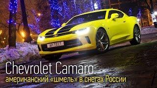 Chevrolet Camaro — мускул-кар 😋с двухлитровым мотором🙁. Тесты АвтоРЕВЮ.