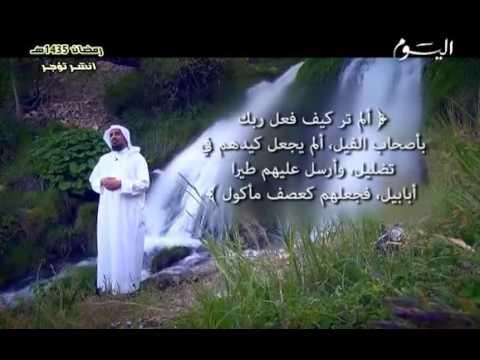 دلائل النبوة.. الحلقة الواحدة والعشرون ( 21 ).. أمّي يعلم الأمم ﷺ / د. عبدالمحسن المطيري