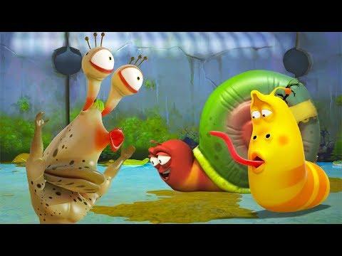 Larva - co skrývá šnek?